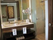 grand-bliss-batheroom-shower.JPG