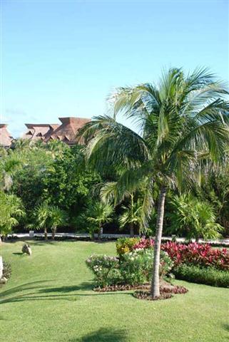 15-grand-mayan-grounds