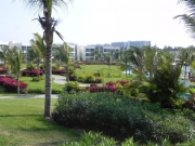 mayan-palace-landscaped-grounds.jpg