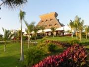 mayan-palace-thatch-roof.jpg