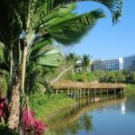 A Week Vidanta Nuevo Vallarta Resort Itinerary - Part One
