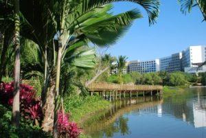 nuevo vallarta resort grounds